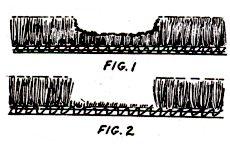 RepairCarpet1