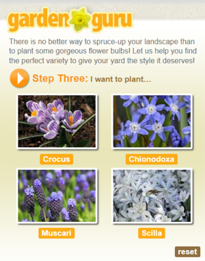Garden Guru Bulbs