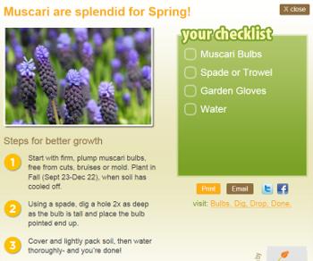 Garden Guru Bulb Planting